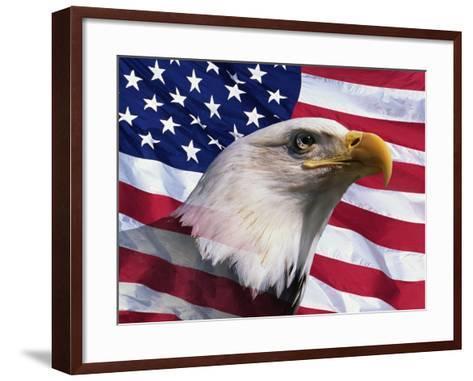 Bald Eagle and American Flag-Joseph Sohm-Framed Art Print