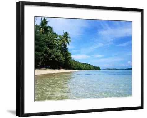 Tropical Coastline of Turtle Island-David Papazian-Framed Art Print