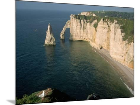 The Manneport Arch and Aiguille of Etretat Cliffs, France-Franz-Marc Frei-Mounted Photographic Print
