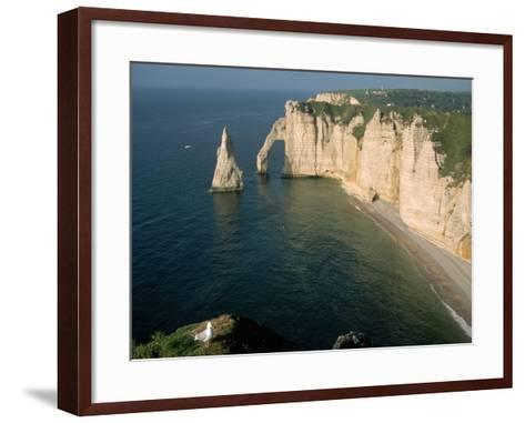 The Manneport Arch and Aiguille of Etretat Cliffs, France-Franz-Marc Frei-Framed Art Print