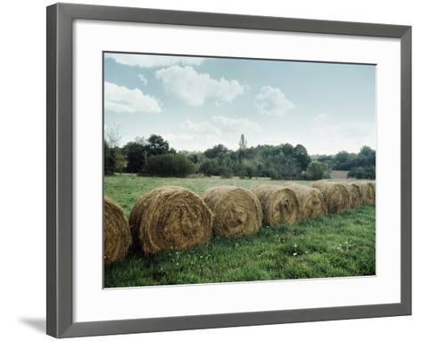 Bales of Hay in a Field--Framed Art Print