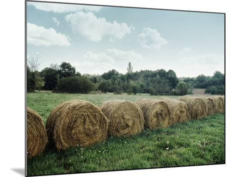 Bales of Hay in a Field--Mounted Photographic Print