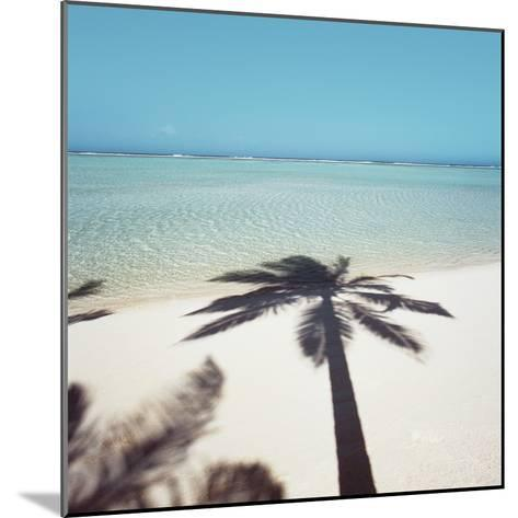 Shadow of Palm Tree on a Beach--Mounted Photographic Print