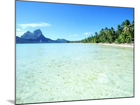 Tropical Waters--Mounted Photographic Print