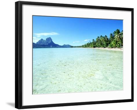 Tropical Waters--Framed Art Print