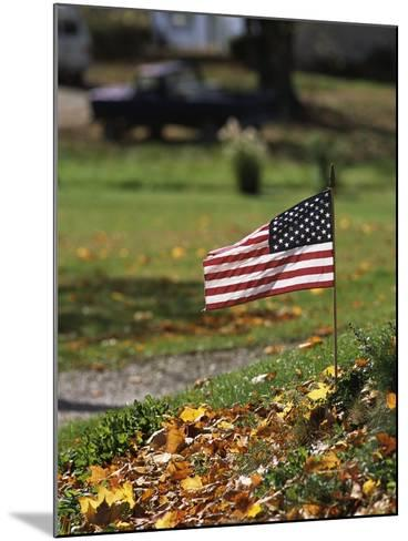 Small American Flag Posted in Yard-Bob Rowan-Mounted Photographic Print