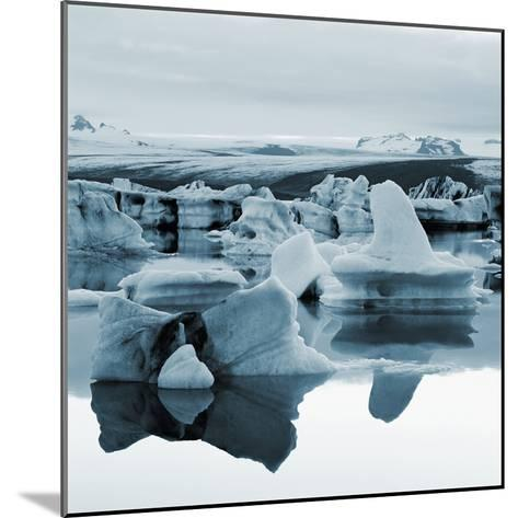 Bergy Bits Near Pack Ice--Mounted Photographic Print