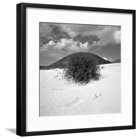 Hills Behind Cluster of Beach Grass--Framed Art Print