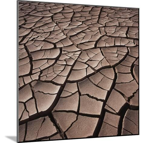 Deep Cracks in the Desert--Mounted Photographic Print
