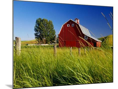 Red Barn in Long Grass-Bob Krist-Mounted Photographic Print