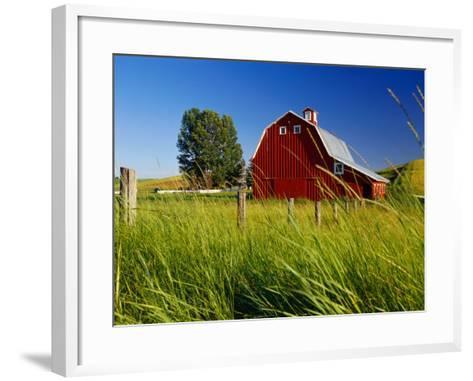 Red Barn in Long Grass-Bob Krist-Framed Art Print