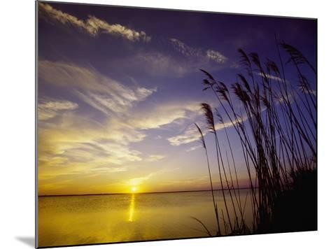 Sunset on the Barnegat Bay and Sea Oats-Bob Krist-Mounted Photographic Print