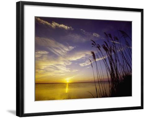 Sunset on the Barnegat Bay and Sea Oats-Bob Krist-Framed Art Print
