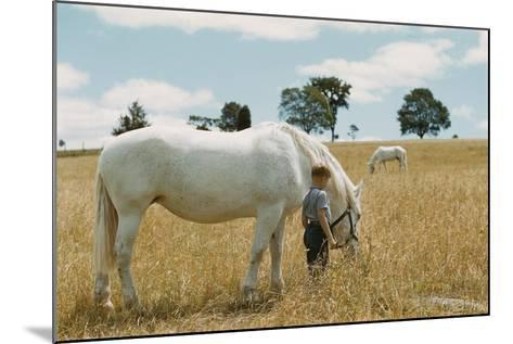Boy Standing with Horse in a Field-William P^ Gottlieb-Mounted Photographic Print