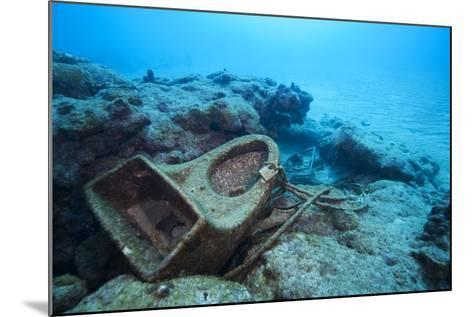 Toilet Bowl Resting on Coral Reef in Dominican Republic-Paul Souders-Mounted Photographic Print