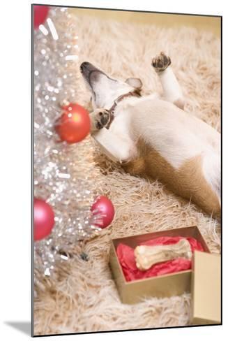 Dog Lying on Rug by Christmas Tree--Mounted Photographic Print