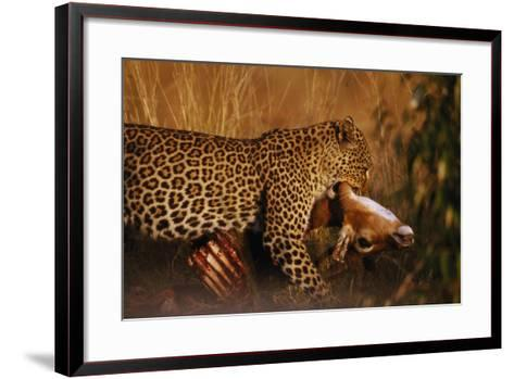 Leopard with Impala Kill--Framed Art Print