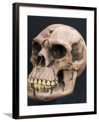 Neanderthal or Neandertal Man - Reconstructed Skull--Framed Art Print