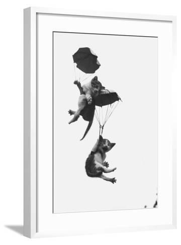 Parachuting Kittens--Framed Art Print