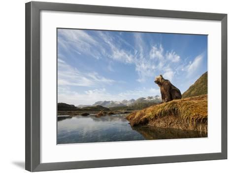 Brown Bear and Mountains, Katmai National Park, Alaska--Framed Art Print