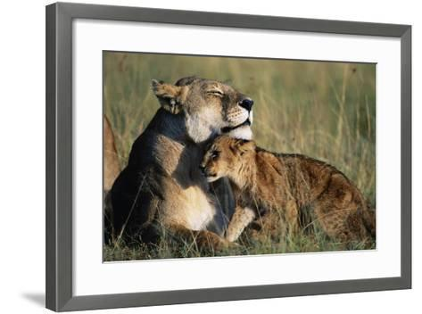 Lioness and Cub Resting on the Savanna--Framed Art Print