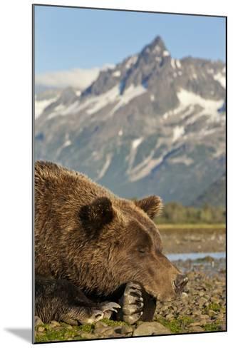 Brown Bear and Coastal Mountains, Katmai National Park, Alaska-Paul Souders-Mounted Photographic Print