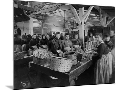 Women Canning Oysters--Mounted Photographic Print