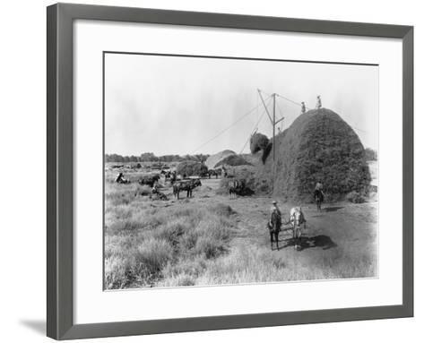 Alfalfa Haystack-C.E. Watkins-Framed Art Print