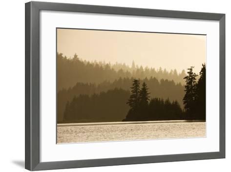 Summer Sunset Lights Rainforest Along Afognak Bay-Paul Souders-Framed Art Print