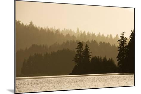 Summer Sunset Lights Rainforest Along Afognak Bay-Paul Souders-Mounted Photographic Print