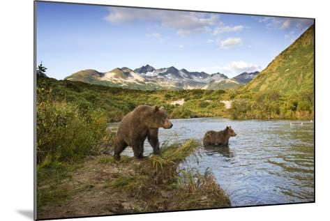 Two Year Old Grizzly Bears on Riverbank at Kinak Bay-Paul Souders-Mounted Photographic Print