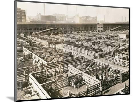 Overhead View of Chicago Stockyards--Mounted Photographic Print