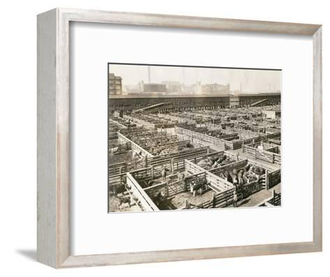 Overhead View of Chicago Stockyards--Framed Art Print