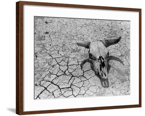 Cattle Skull on the Parched Earth-Arthur Rothstein-Framed Art Print