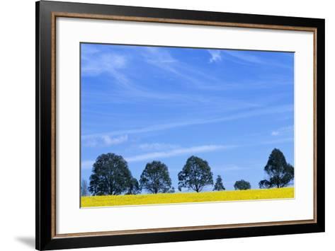 Field of Bright Yellow Mustard Seed--Framed Art Print