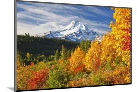 Fall Colors Add Beauty to Mt. Hood, Mt. Hood National Forest, Oregon,-Craig Tuttle-Mounted Photographic Print