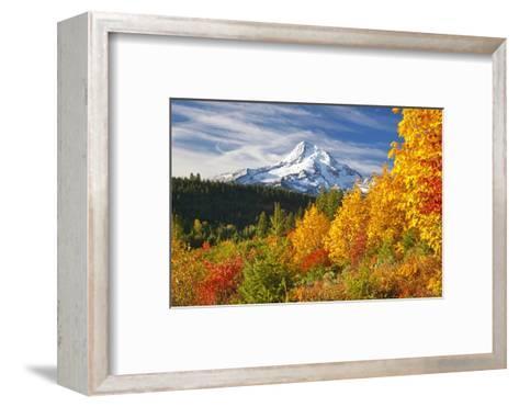Fall Colors Add Beauty to Mt. Hood, Mt. Hood National Forest, Oregon,-Craig Tuttle-Framed Art Print