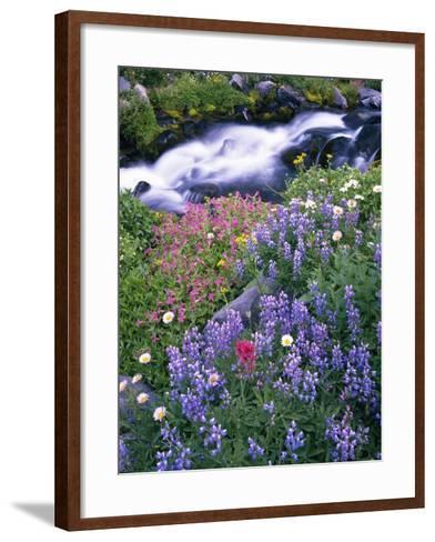 Wildflowers Blooming Along Rushing Creek-Craig Tuttle-Framed Art Print