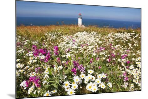 Wildflwers at North Head Lighthouse, Washington State, Pacific Ocean, Pacific Northwest-Craig Tuttle-Mounted Photographic Print