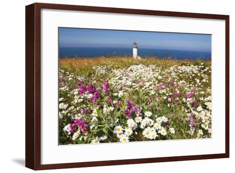 Wildflwers at North Head Lighthouse, Washington State, Pacific Ocean, Pacific Northwest-Craig Tuttle-Framed Art Print