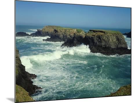 Mendocino Coast, CA-James Randklev-Mounted Photographic Print