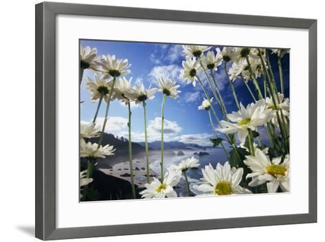 Wildflowers in Bloom Along Coastline-Craig Tuttle-Framed Art Print