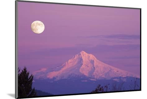 Mount Hood and Full Moon-Craig Tuttle-Mounted Photographic Print