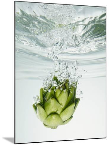 Artichoke in Water-Biwa-Mounted Photographic Print