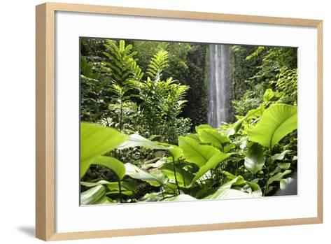 Waterfall in Rain Forest, Jurong Bird Park, Singapore-Angelo Cavalli-Framed Art Print