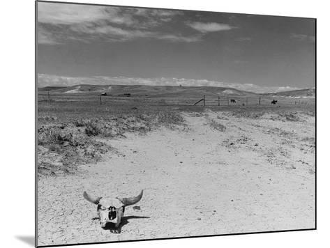 Over Grazed Land-Arthur Rothstein-Mounted Photographic Print