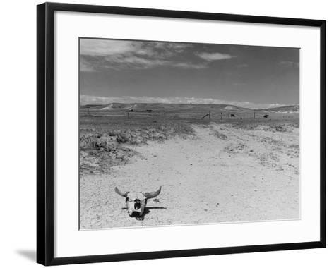 Over Grazed Land-Arthur Rothstein-Framed Art Print