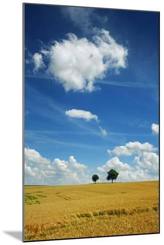 Wheat Field and Cumulonimbus Clouds-Frank Krahmer-Mounted Photographic Print