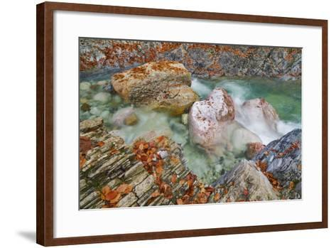 Mountain Stream and Rocks with Autumn Leaves, Garnitzenklamm, Hermagor, Carinthia, Austria-Frank Krahmer-Framed Art Print