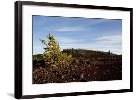 Volcanic Lava Fields, Craters of the Moon National Monument, Idaho-Paul Souders-Framed Art Print